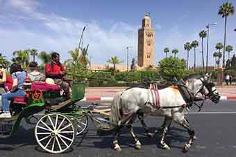 10 days desert tour from Casablanca to Marrakech