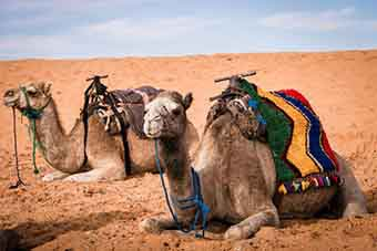 3 days desert tour from Fes to Merzouga